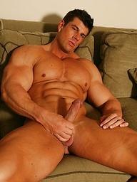 Big Muscle Display