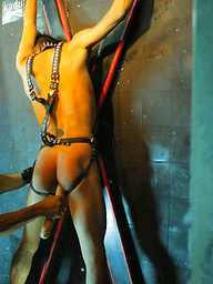 Tied to a cross hunk fucked with a toy before oral