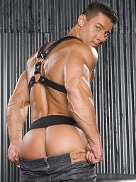 Hit muscle hunk Robert Van Damme