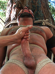 Josh West tied up, flogged, dildo fucked, and cumming fully suspended.