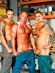 Chris Hacker, Zsolt XL and Mickey A shows their cocks