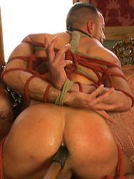 Porn superstar Jessie Colter gets bound, gagged and edged until he begs to cum.