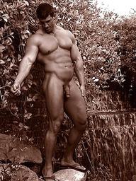 In Savage Garden