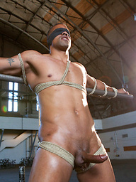 Straight Muscle God edged to the max and begging to cum.